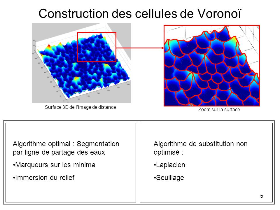 5 Construction des cellules de Voronoï Surface 3D de limage de distance Zoom sur la surface Algorithme optimal : Segmentation par ligne de partage des