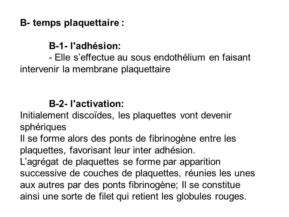B- temps plaquettaire : B-1- l'adhésion: - Elle seffectue au sous endothélium en faisant intervenir la membrane plaquettaire B-2- l'activation: Initia