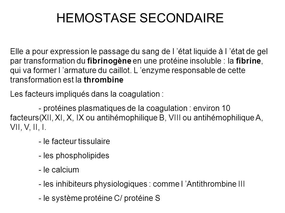 HEMOSTASE SECONDAIRE Elle a pour expression le passage du sang de l état liquide à l état de gel par transformation du fibrinogène en une protéine ins