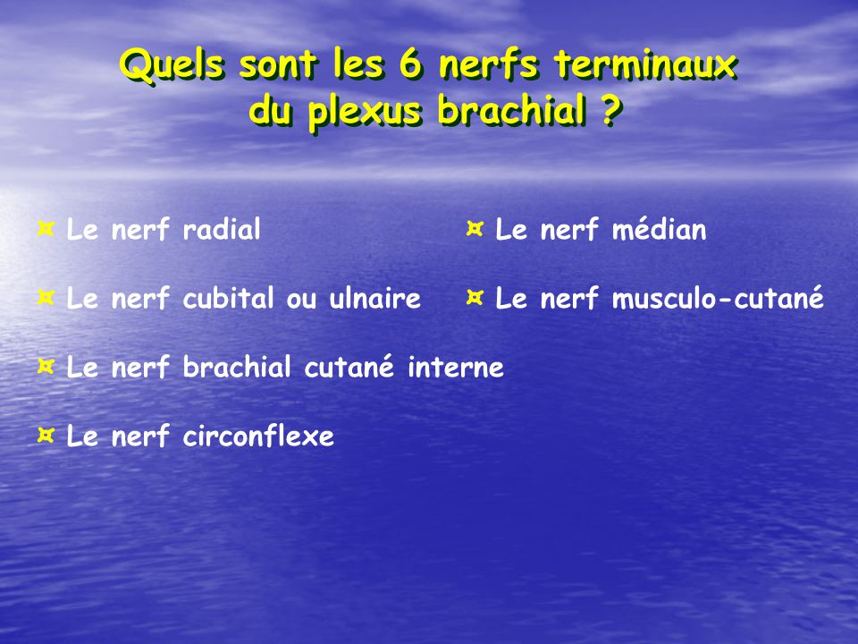 Quels sont les 6 nerfs terminaux du plexus brachial ? ¤ Le nerf radial¤ Le nerf médian ¤ Le nerf cubital ou ulnaire¤ Le nerf musculo-cutané ¤ Le nerf