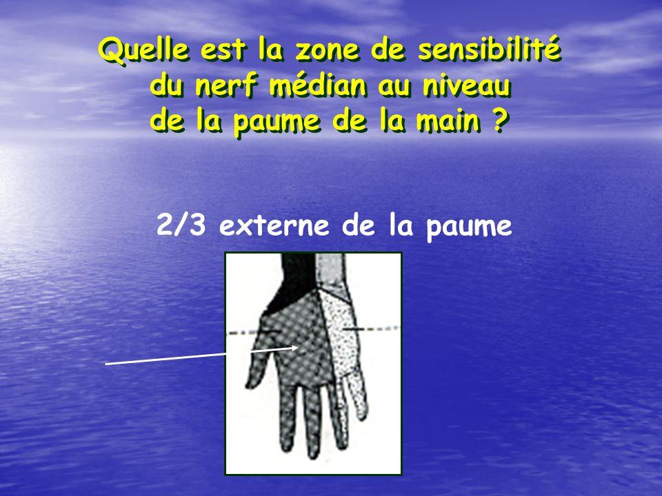 Quelle est la zone de sensibilité du nerf médian au niveau de la paume de la main ? 2/3 externe de la paume
