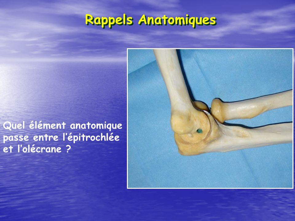 Rappels Anatomiques Quel élément anatomique passe entre lépitrochlée et lolécrane ?