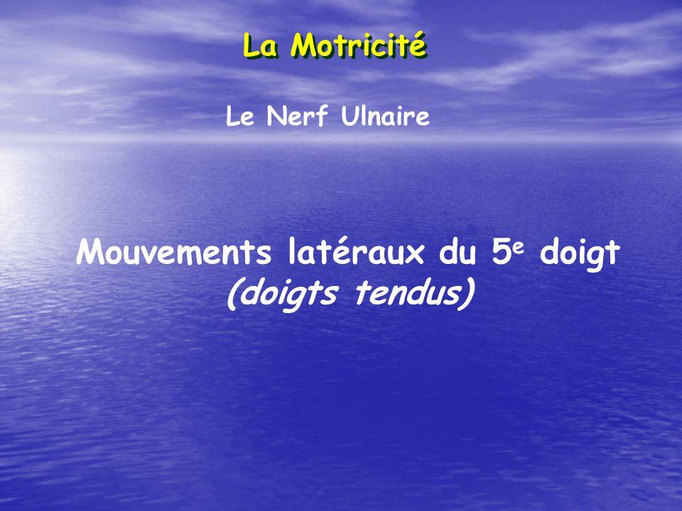La Motricité Le Nerf Ulnaire Mouvements latéraux du 5 e doigt (doigts tendus)