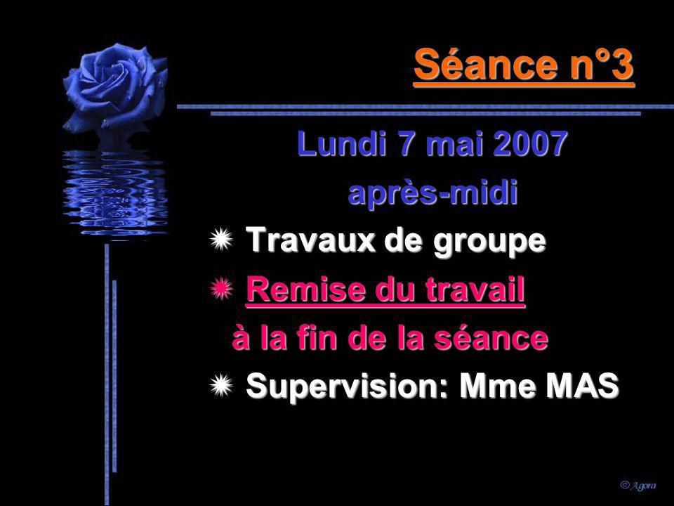 Séance n°2 Vendredi 4 mai 2007 après-midi Travaux de groupe Supervision: Mme MAS