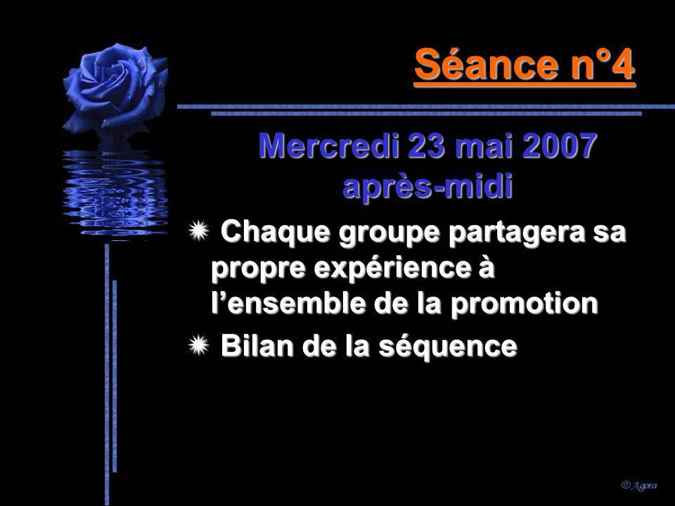 Séance n°3 Lundi 7 mai 2007 après-midi Travaux de groupe Remise du travail à la fin de la séance Supervision: Mme MAS