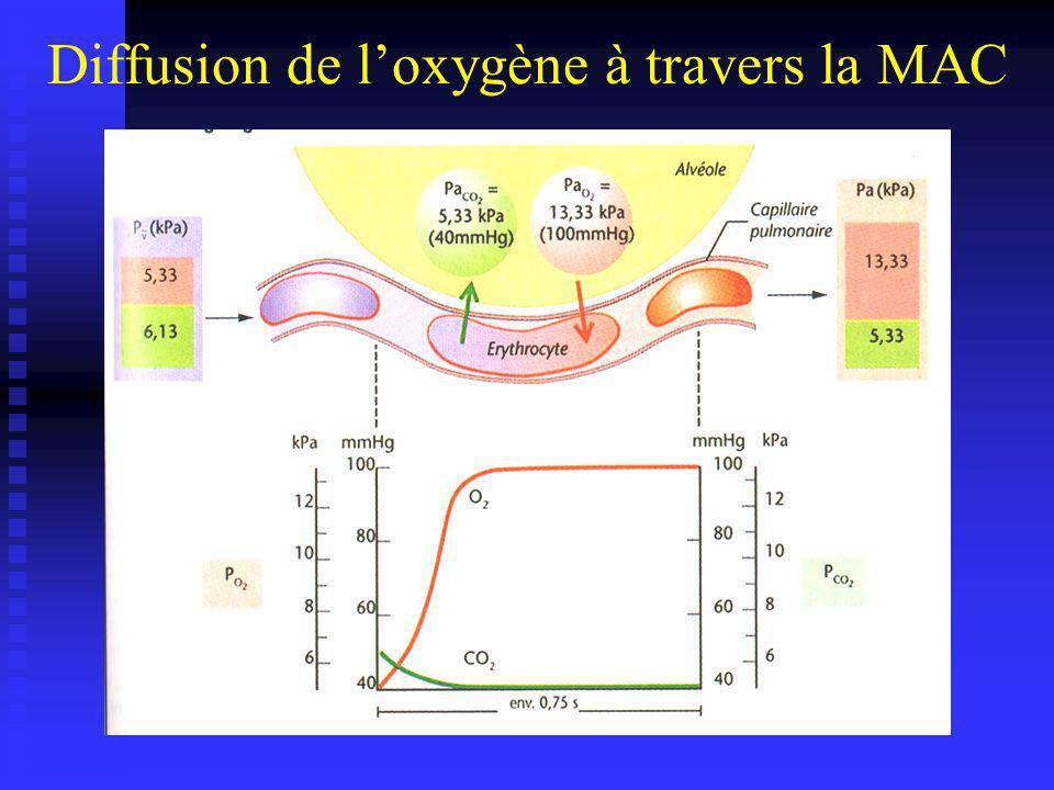 Diffusion du CO2 à travers la MAC A lentrée du capillaire : PCO2 = A lentrée du capillaire : PCO2 = 44 mmhg Au niveau alvéolaire : PACO2 = Au niveau alvéolaire : PACO2 = 40 mmhg Malgré un faible gradient de pression : Malgré un faible gradient de pression : Le CO2 diffuse facilement ( ) Le CO2 diffuse facilement ( grande solubilité +++ ) Les blocs alvéolo-capillaire : Les blocs alvéolo-capillaire : témoigne de la gravité de la maladie lhypercapnie témoigne de la gravité de la maladie