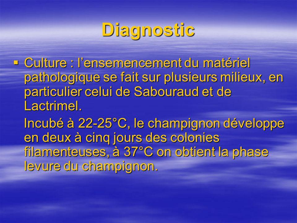 Diagnostic Culture : lensemencement du matériel pathologique se fait sur plusieurs milieux, en particulier celui de Sabouraud et de Lactrimel. Culture