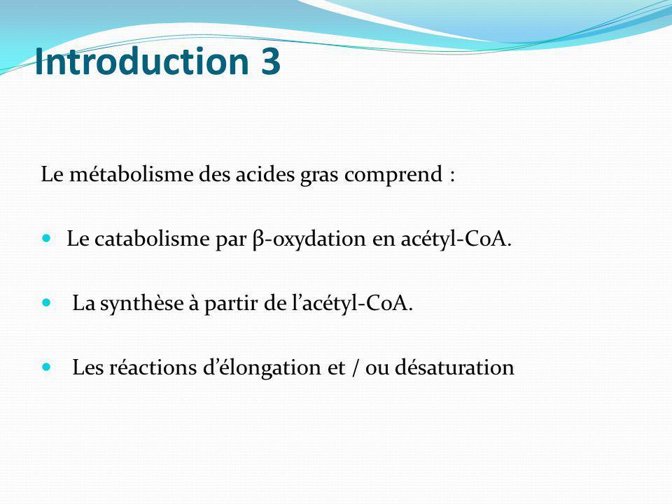 Introduction 3 Le métabolisme des acides gras comprend : Le catabolisme par β-oxydation en acétyl-CoA. La synthèse à partir de lacétyl-CoA. Les réacti