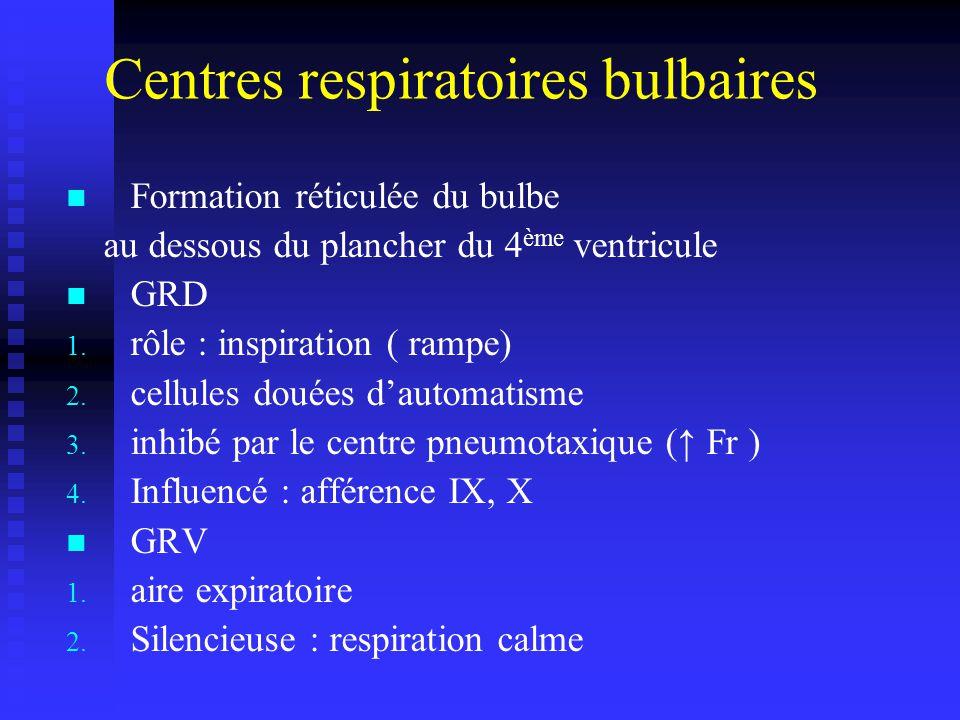 Centres respiratoires bulbaires Formation réticulée du bulbe au dessous du plancher du 4 ème ventricule GRD 1.