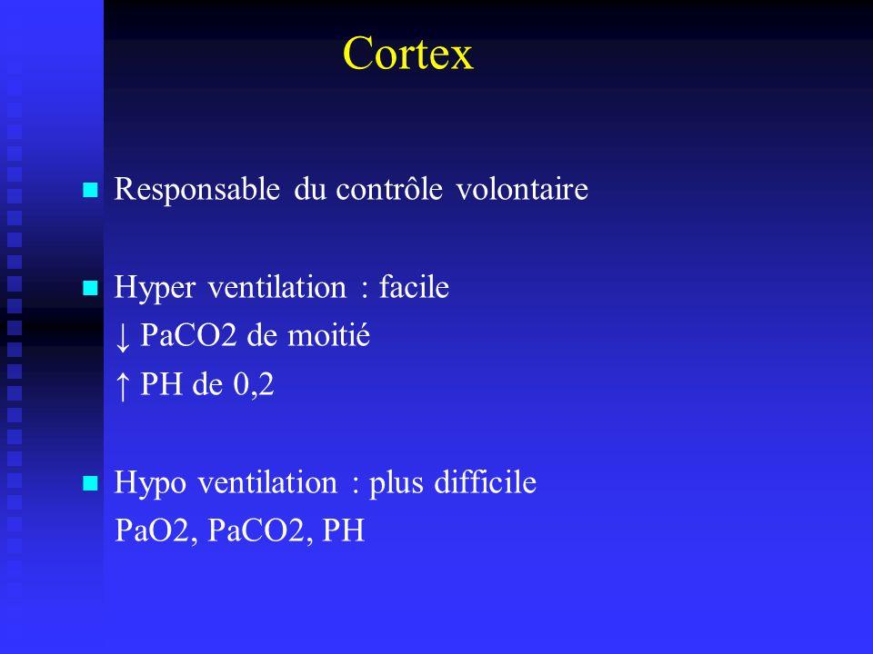 Cortex Responsable du contrôle volontaire Hyper ventilation : facile PaCO2 de moitié PH de 0,2 Hypo ventilation : plus difficile PaO2, PaCO2, PH