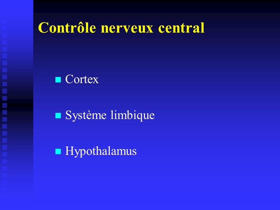 Contrôle nerveux central Cortex Système limbique Hypothalamus