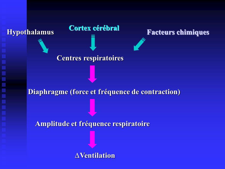 Cortex cérébral Hypothalamus Facteurs chimiques Centres respiratoires Diaphragme (force et fréquence de contraction) Amplitude et fréquence respiratoire Ventilation Ventilation