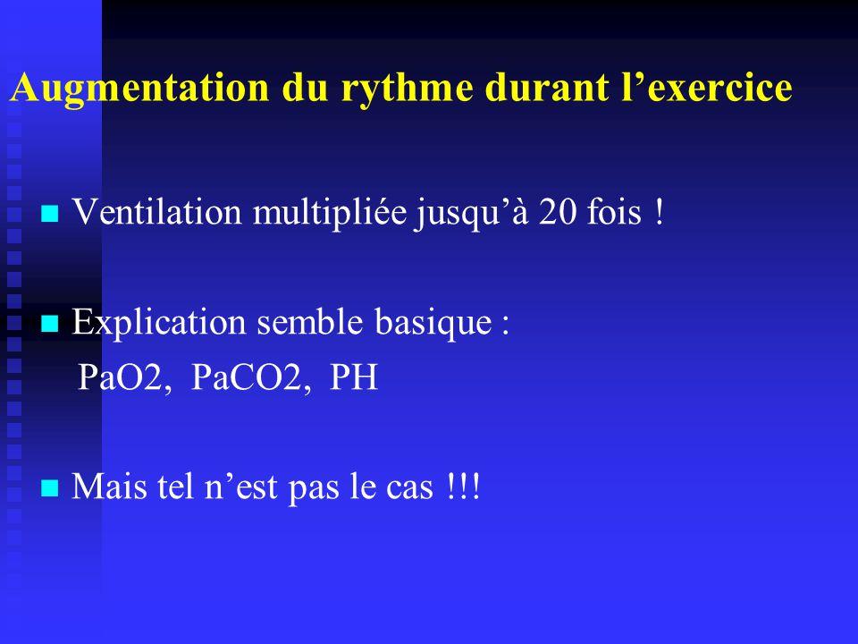 Augmentation du rythme durant lexercice Ventilation multipliée jusquà 20 fois .