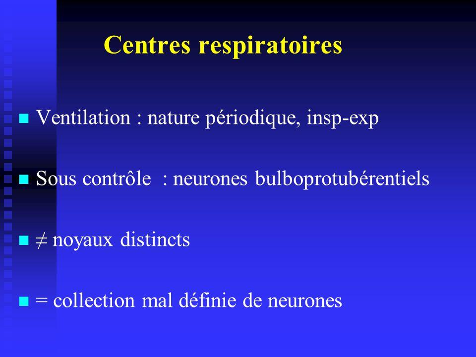 Centres respiratoires Ventilation : nature périodique, insp-exp Sous contrôle : neurones bulboprotubérentiels noyaux distincts = collection mal définie de neurones