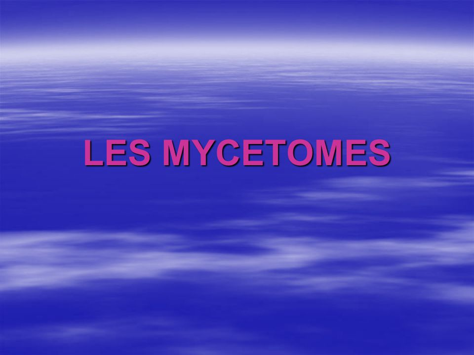 LES MYCETOMES