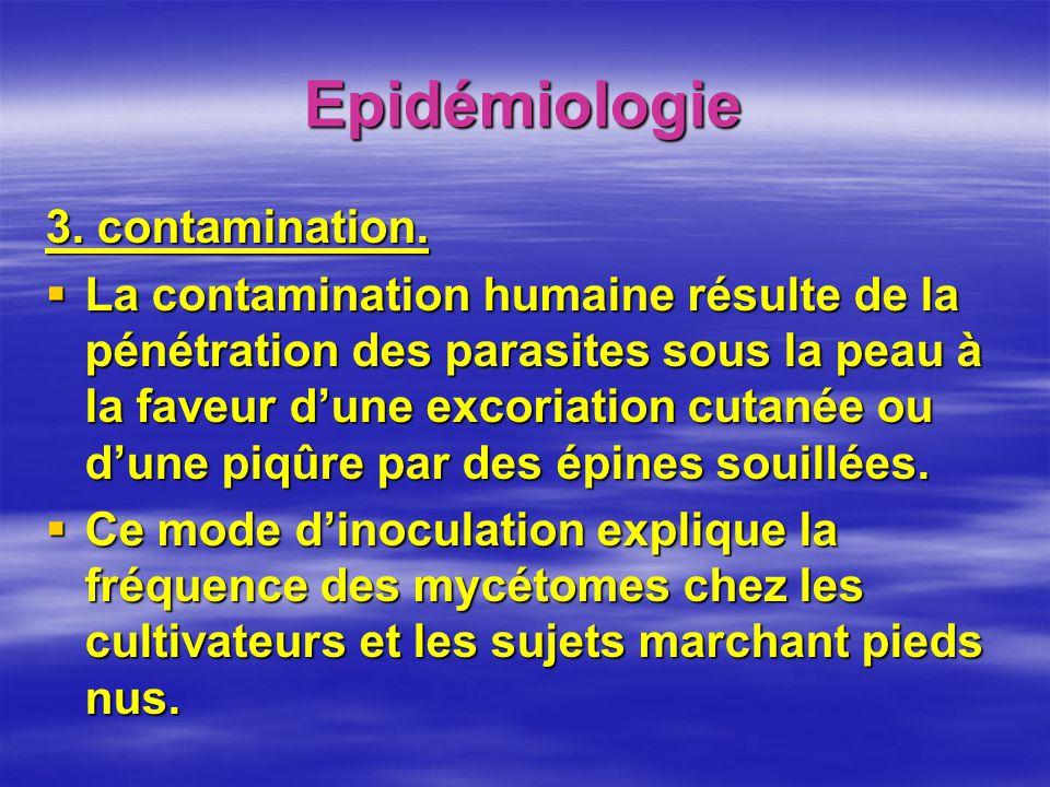 Epidémiologie 3. contamination. La contamination humaine résulte de la pénétration des parasites sous la peau à la faveur dune excoriation cutanée ou