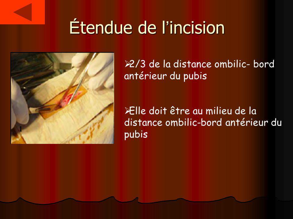 É tendue de l incision 2/3 de la distance ombilic- bord antérieur du pubis Elle doit être au milieu de la distance ombilic-bord antérieur du pubis