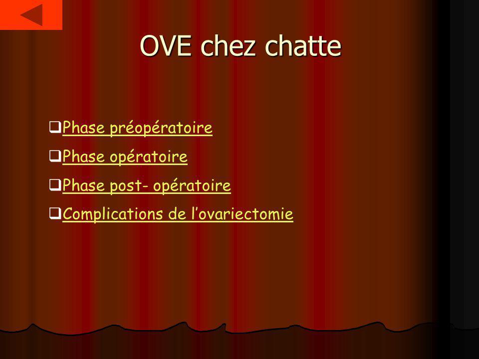 OVE chez chatte Phase préopératoire Phase opératoire Phase post- opératoire Complications de lovariectomie