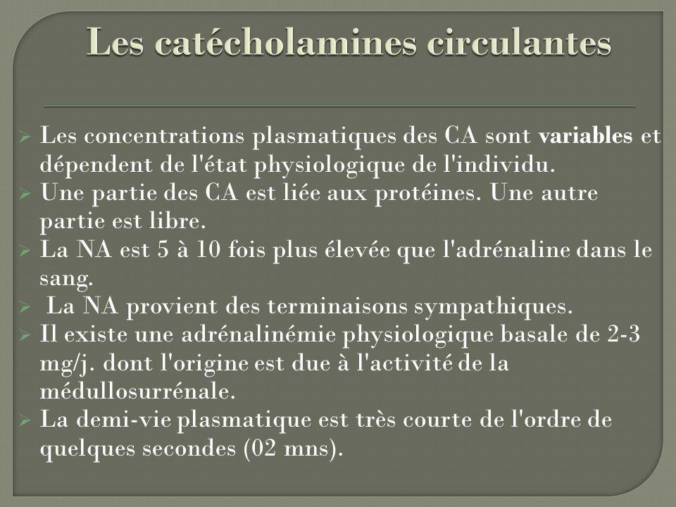 Les concentrations plasmatiques des CA sont variables et dépendent de l'état physiologique de l'individu. Une partie des CA est liée aux protéines. Un