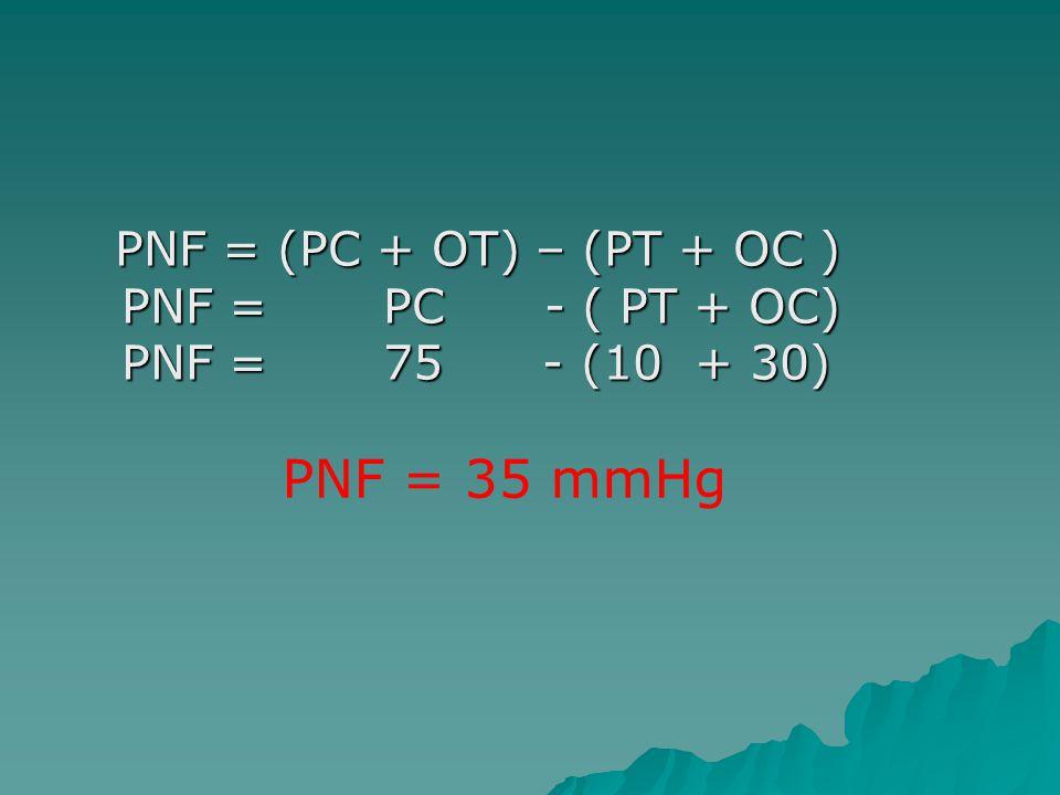 PNF = (PC + OT) – (PT + OC ) PNF = PC - ( PT + OC) PNF = 75 - (10 + 30) PNF = (PC + OT) – (PT + OC ) PNF = PC - ( PT + OC) PNF = 75 - (10 + 30) PNF =