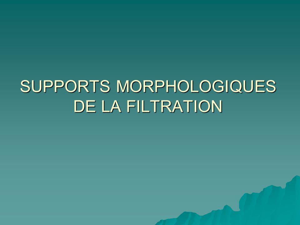 SUPPORTS MORPHOLOGIQUES DE LA FILTRATION