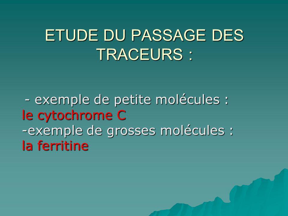 ETUDE DU PASSAGE DES TRACEURS : - exemple de petite molécules : le cytochrome C -exemple de grosses molécules : la ferritine - exemple de petite moléc