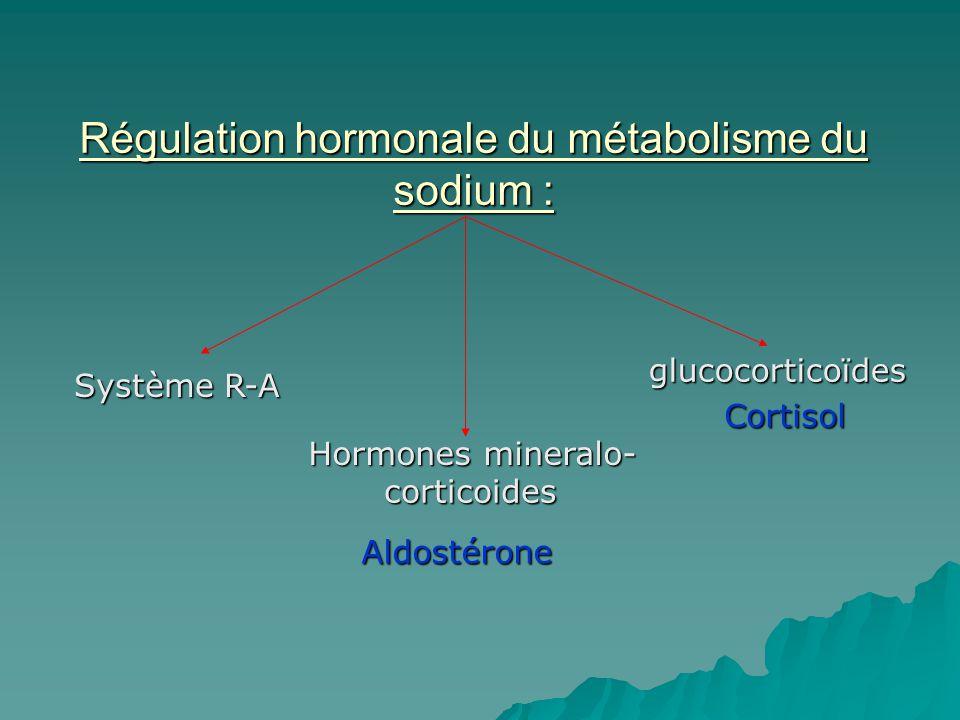 Régulation hormonale du métabolisme du sodium : Système R-A Hormones mineralo- corticoides glucocorticoïdes Aldostérone Cortisol