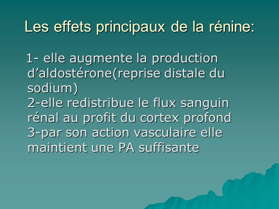 Les effets principaux de la rénine: 1- elle augmente la production daldostérone(reprise distale du sodium) 2-elle redistribue le flux sanguin rénal au