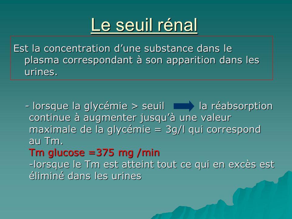 Le seuil rénal Est la concentration dune substance dans le plasma correspondant à son apparition dans les urines. - lorsque la glycémie > seuil la réa