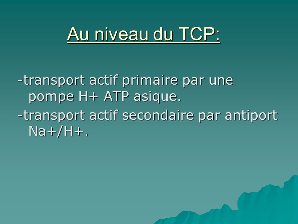 Au niveau du TCP: -transport actif primaire par une pompe H+ ATP asique. -transport actif secondaire par antiport Na+/H+.