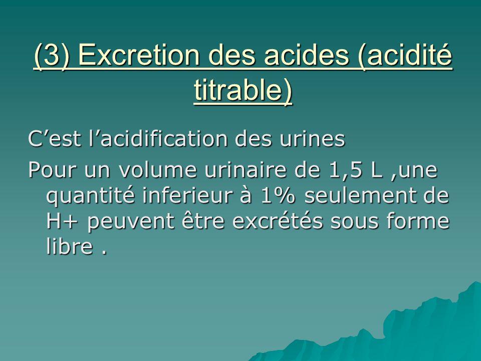 (3) Excretion des acides (acidité titrable) Cest lacidification des urines Pour un volume urinaire de 1,5 L,une quantité inferieur à 1% seulement de H