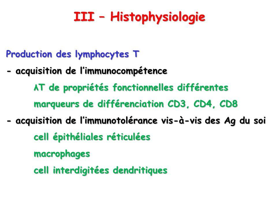 Production des lymphocytes T - acquisition de limmunocompétence λT de propriétés fonctionnelles différentes marqueurs de différenciation CD3, CD4, CD8