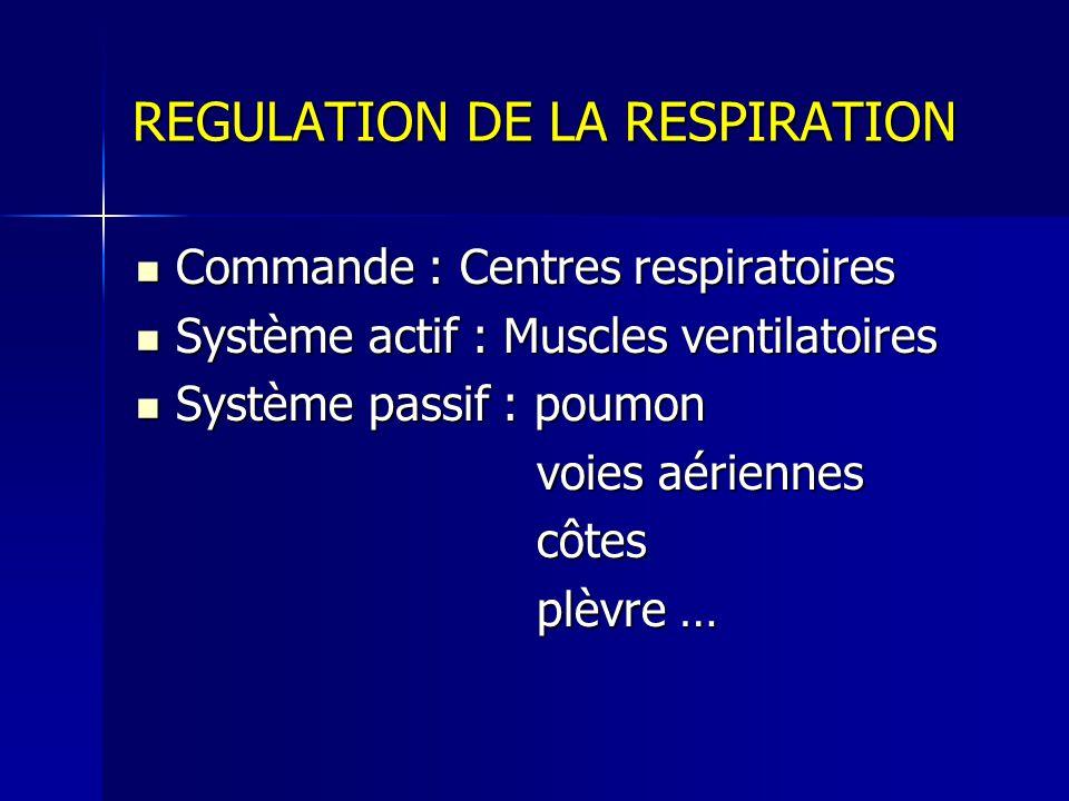 REGULATION DE LA RESPIRATION Commande : Centres respiratoires Commande : Centres respiratoires Système actif : Muscles ventilatoires Système actif : Muscles ventilatoires Système passif : poumon Système passif : poumon voies aériennes voies aériennes côtes côtes plèvre … plèvre …