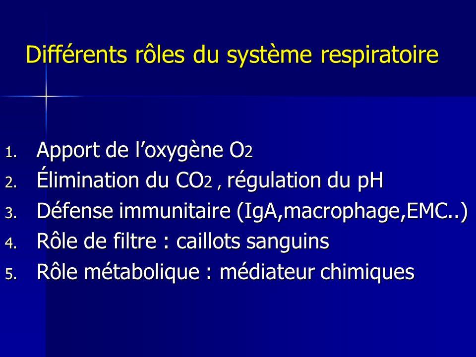 Différents rôles du système respiratoire 1.Apport de loxygène O 2 2.