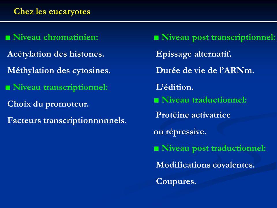 Chez les eucaryotes Niveau chromatinien:  Acétylation des histones.  Méthylation des cytosines. Niveau transcriptionnel:  Choix du promoteur.  Fac