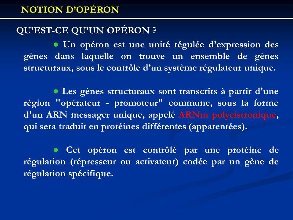 QUEST-CE QUUN OPÉRON ? Un opéron est une unité régulée dexpression des gènes dans laquelle on trouve un ensemble de gènes structuraux, sous le contrôl