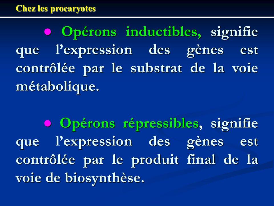 Chez les procaryotes Opérons inductibles, signifie que expression des gènes est contrôlée par le substrat de la voie métabolique. Opérons inductibles,