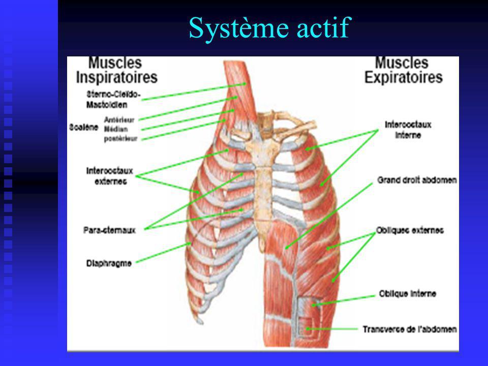 Système actif