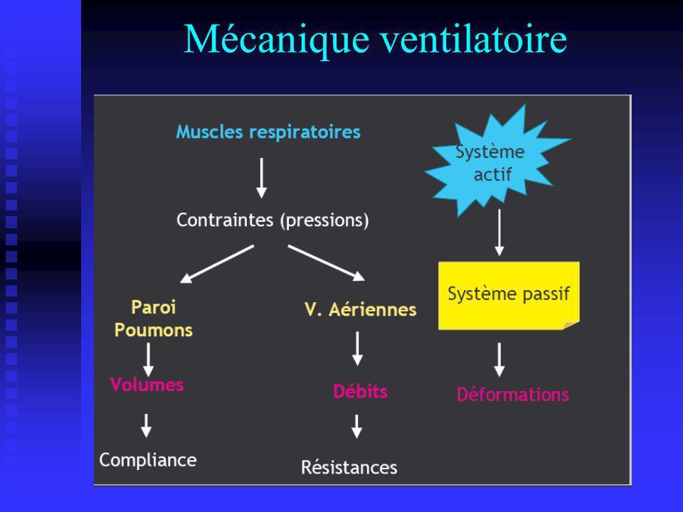Mécanique ventilatoire ( introduction ) Son but est de déterminer les propriétés mécaniques de lappareil ventilatoire Son but est de déterminer les propriétés mécaniques de lappareil ventilatoire - En conditions statiques : volumes +++ - En conditions statiques : volumes +++ - En conditions dynamiques : Débits +++ - En conditions dynamiques : Débits +++