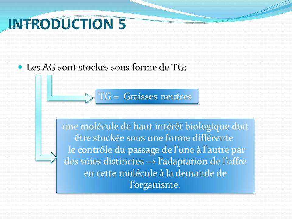 INTRODUCTION 5 Les AG sont stockés sous forme de TG: une molécule de haut intérêt biologique doit être stockée sous une forme différente le contrôle du passage de lune à lautre par des voies distinctes ladaptation de loffre en cette molécule à la demande de lorganisme.