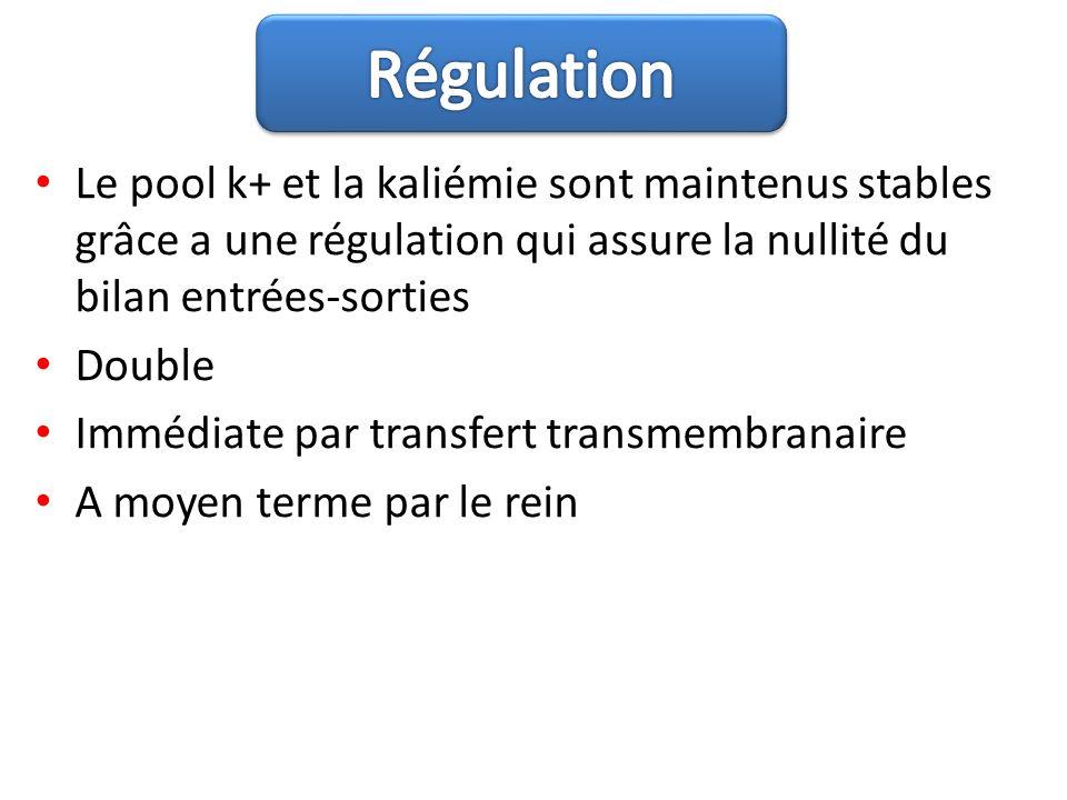 Le pool k+ et la kaliémie sont maintenus stables grâce a une régulation qui assure la nullité du bilan entrées-sorties Double Immédiate par transfert