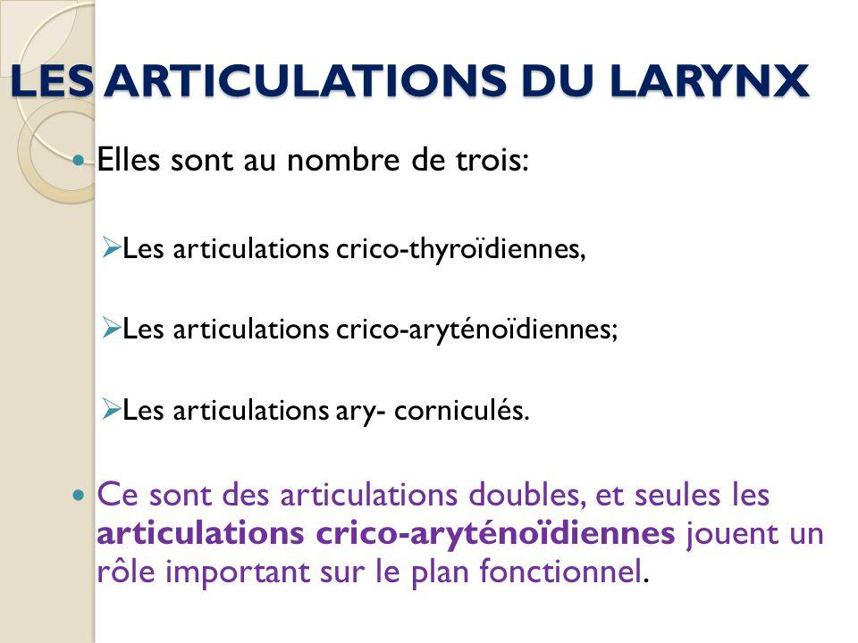 LES ARTICULATIONS DU LARYNX Elles sont au nombre de trois: Les articulations crico-thyroïdiennes, Les articulations crico-aryténoïdiennes; Les articul