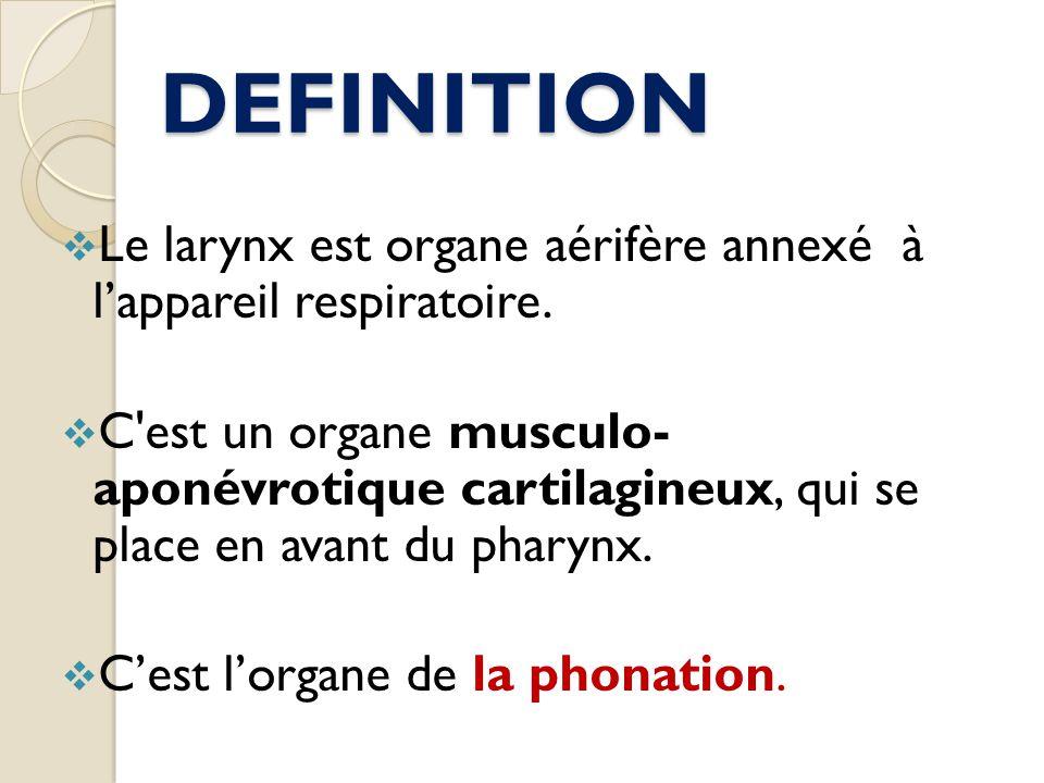 DEFINITION Le larynx est organe aérifère annexé à lappareil respiratoire. C'est un organe musculo- aponévrotique cartilagineux, qui se place en avant
