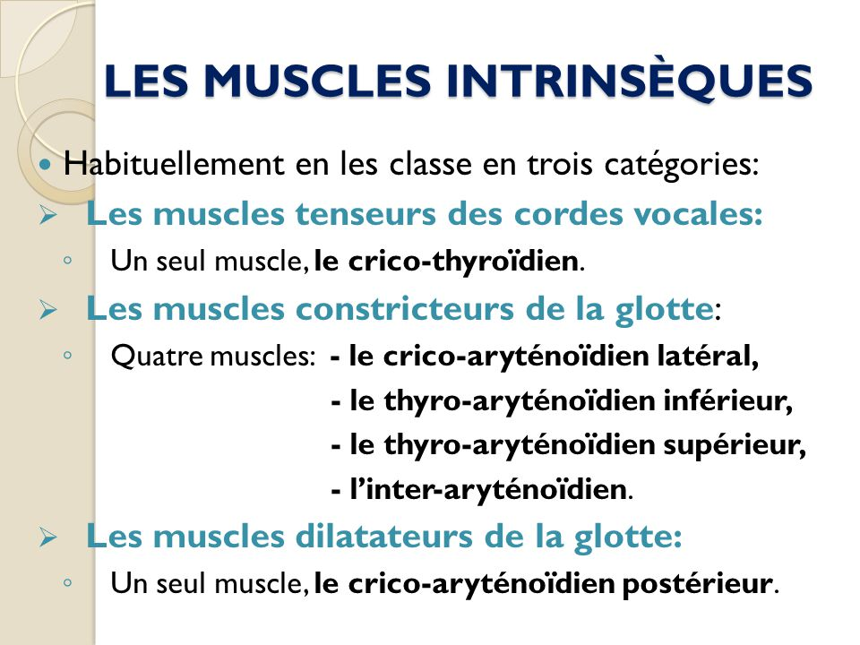 LES MUSCLES INTRINSÈQUES Habituellement en les classe en trois catégories: Les muscles tenseurs des cordes vocales: Un seul muscle, le crico-thyroïdie