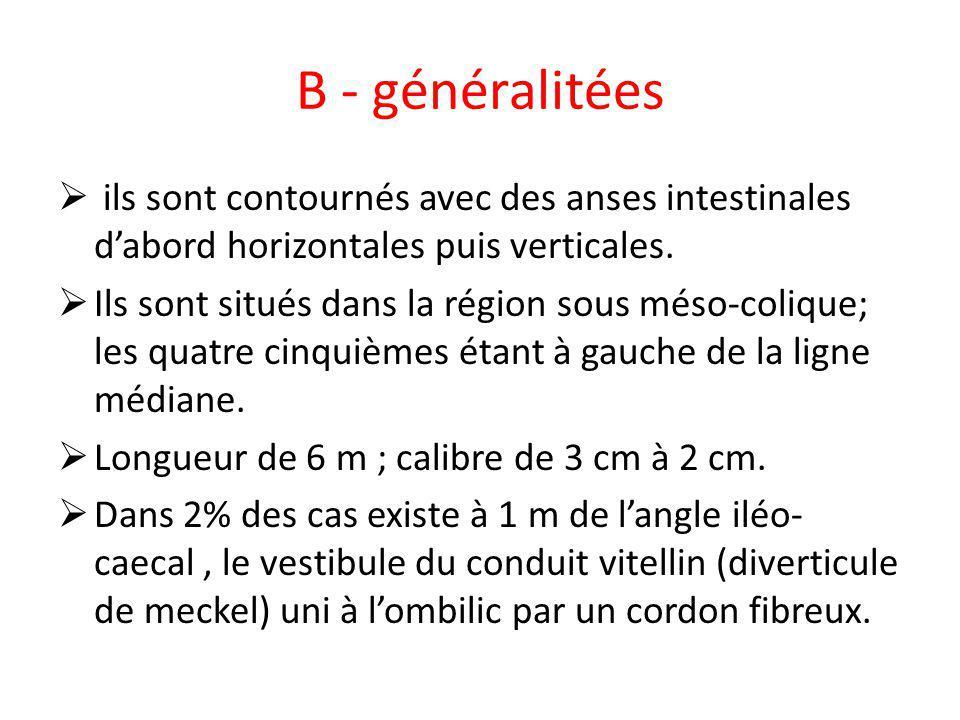 B - généralitées ils sont contournés avec des anses intestinales dabord horizontales puis verticales. Ils sont situés dans la région sous méso-colique