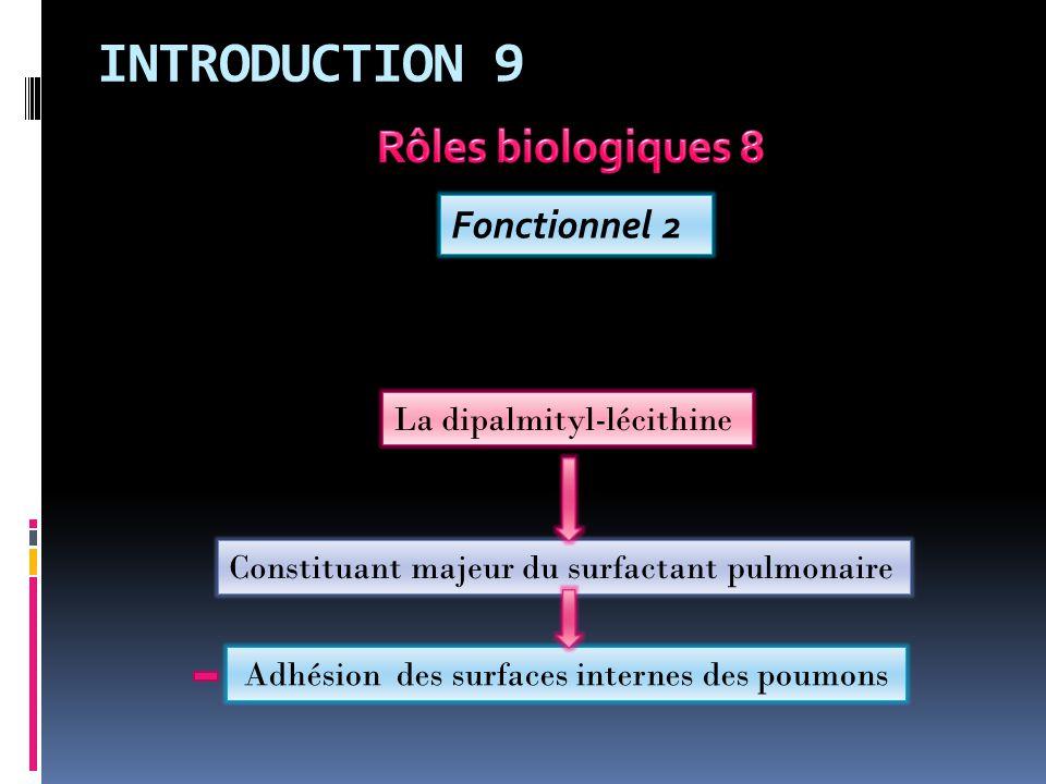 INTRODUCTION 9 Fonctionnel 2 Constituant majeur du surfactant pulmonaire La dipalmityl-lécithine Adhésion des surfaces internes des poumons