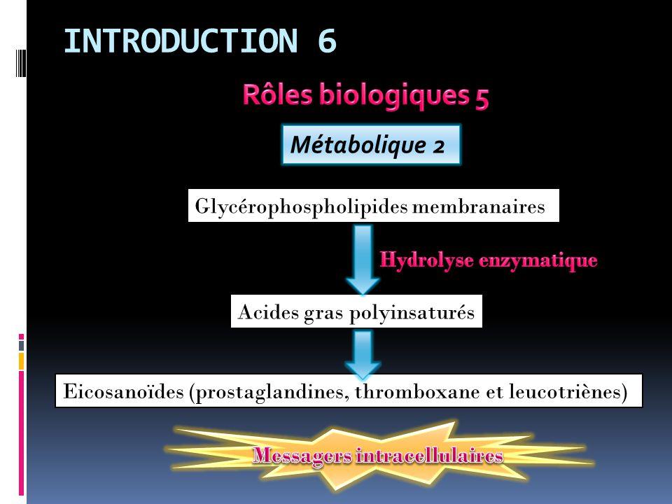 INTRODUCTION 6 Métabolique 2 Glycérophospholipides membranaires Acides gras polyinsaturés Eicosanoïdes (prostaglandines, thromboxane et leucotriènes)