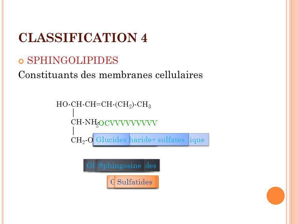 CLASSIFICATION 5 ISOPRÉNOIDES Groupe hétérogène ( rôle dans lorganisme). Isoprène