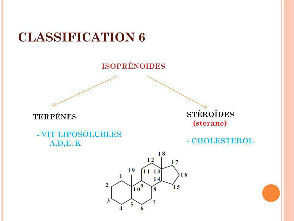 CLASSIFICATION 6 ISOPRÉNOIDES TERP É NES - VIT LIPOSOLUBLES A,D,E, K ST É ROÏDES (sterane) - CHOLESTEROL