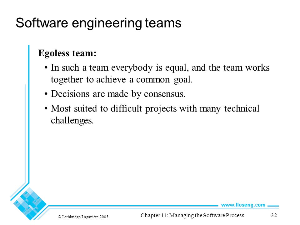 © Lethbridge/Laganière 2005 Chapter 11: Managing the Software Process32 Software engineering teams Egoless team: In such a team everybody is equal, and the team works together to achieve a common goal.
